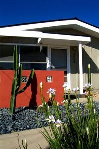 Flowers and cactus in front of a house